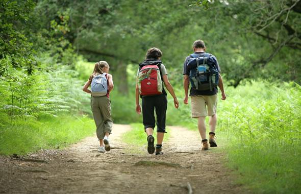 camminare-nel-bosco
