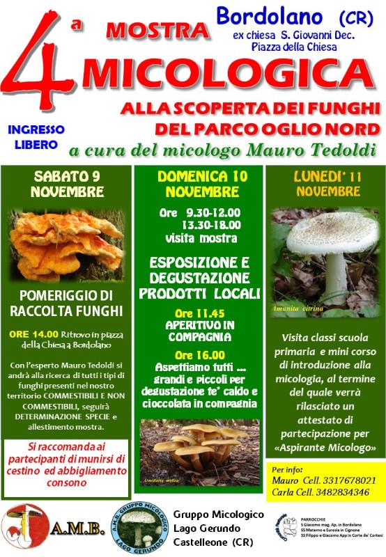 mostra-funghi-2019